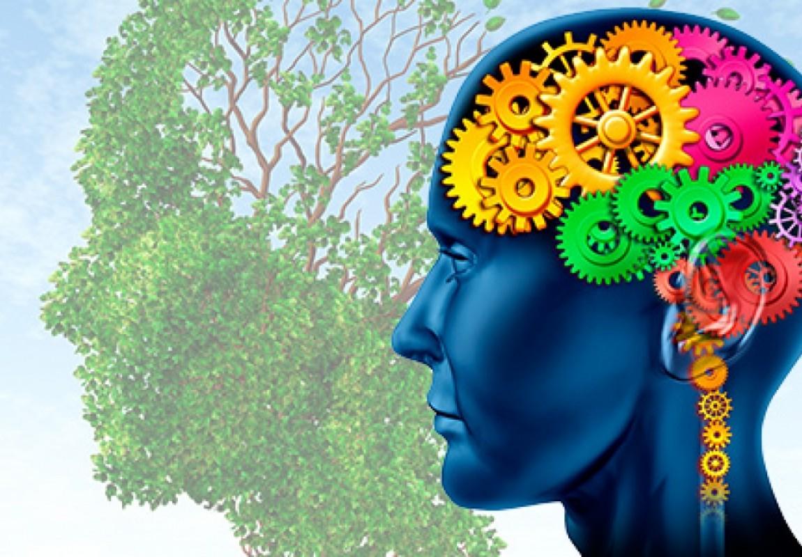 Curso de Psicologia divulga os Anais da Semana Acadêmica 2016